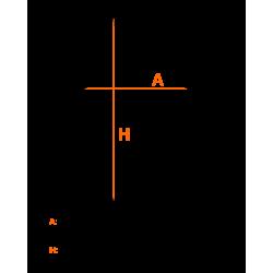 Guantillas MMA Competición CHARLIE GL