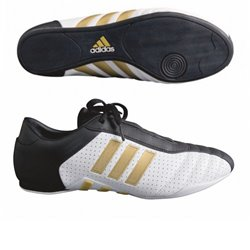 Taekwondo Shoes Tatami TKD ADIDAS EVOLUTION 2