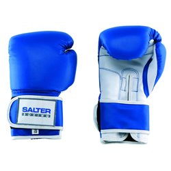 SALTER Boxing Gloves
